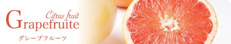 Grapefruite グレープフルーツ Citrus fruit