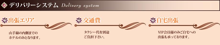 デリバリーシステム